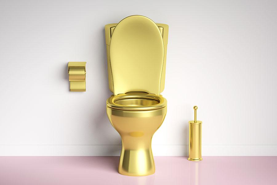 Les toilettes connectées : joindre l'utile à l'agréable