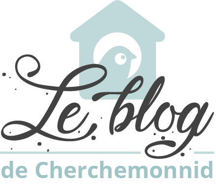 Blog Cherchemonnid
